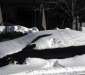 Car-Covered-In-Snow